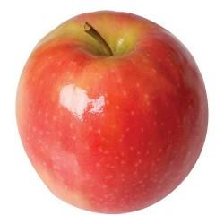 Manzana Pink (por kilo)