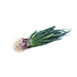 Cebolla verdeo (atado x 6)