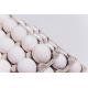 huevos (maple x15)