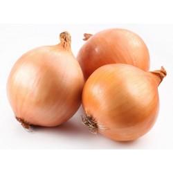 Cebolla (por kilo)