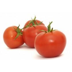 Tomate (por kilo)